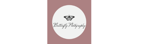Butterfly Photography Image